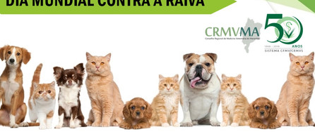 RAIVA.jpg