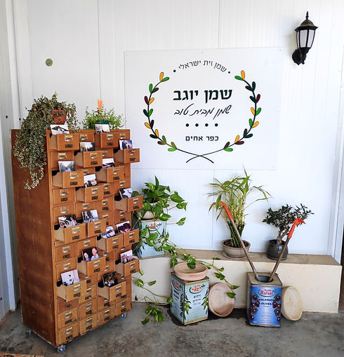 חזית החנות שבמשק מעוצבת עם צמחי נוי לצד תמונות שונות מההיסטוריה של המשק