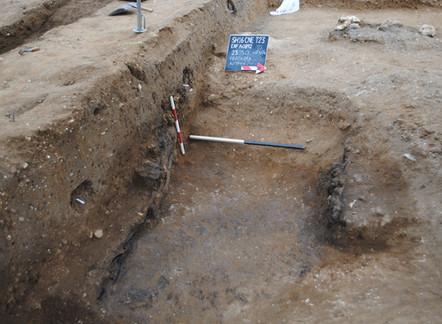 Sedgeford's Anglo-Saxon Malthouse