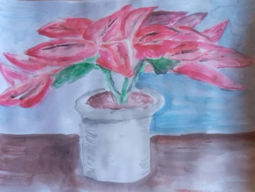 静物画を描く―ポインセチア