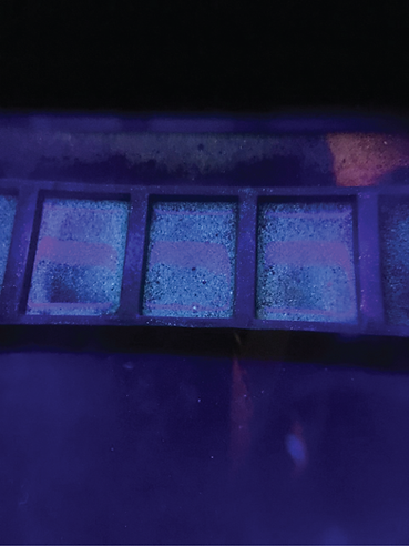 fluorescence.png