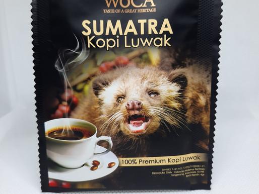 Der Kopi Luwak, der Weltbekannte Katzenkaffee