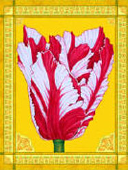 Spring Sprung, A Tulip Sung