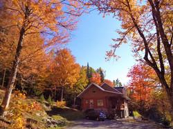 Mi automne