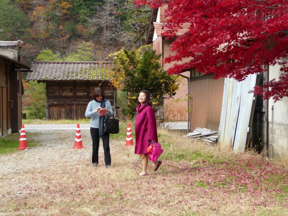 שלכת בשיראקאווה גו, יפן צילום:תמר גרינברג
