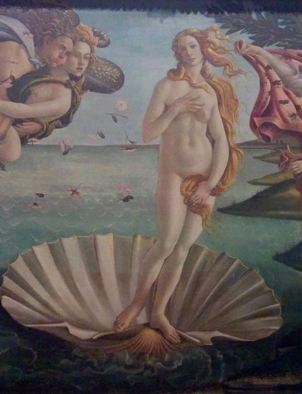 לידתה של ונוס, בוטיצ'לי, גלריה אופיצי, פירנצה