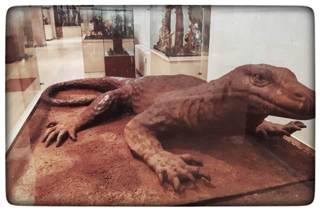 תנין משוקולד במוזיאון השוקולד בברצלונה