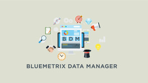 Bluemetrix Data Manager: Harness the Power of Big Data