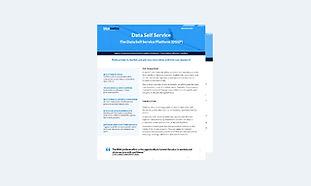 Data Self-Service.jpg