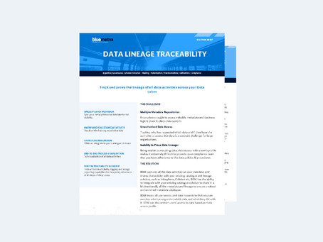 Data Lineage Traceability