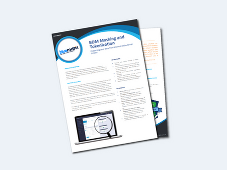 BDM Security Masking and Tokenization Datasheet