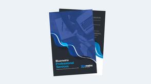 Bluemetrix Professional Services