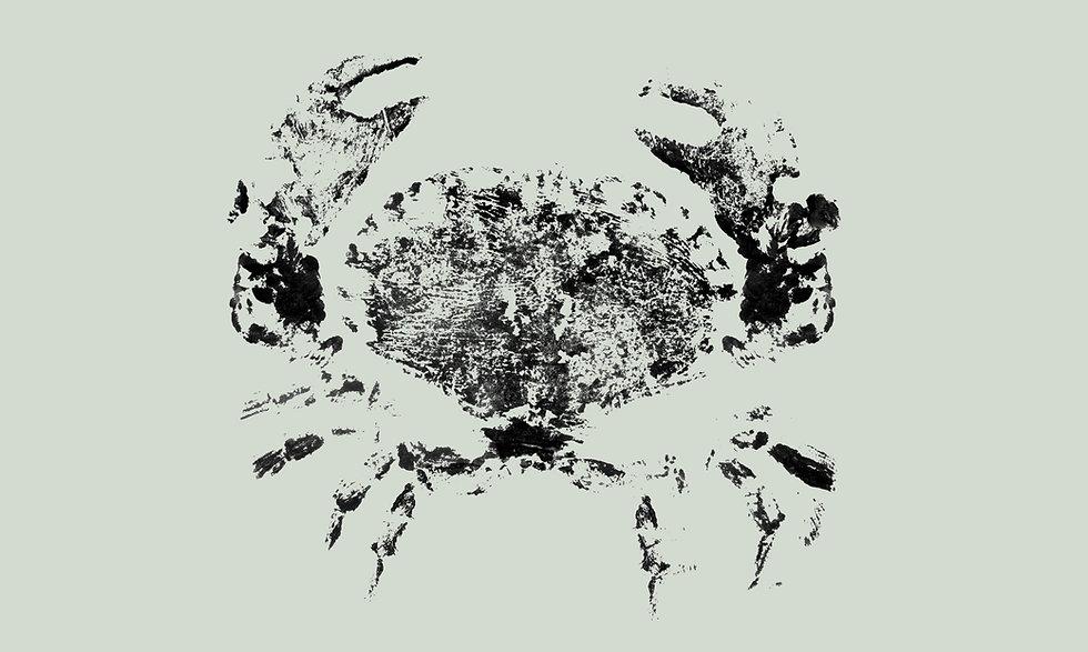 crab_print_background.jpg