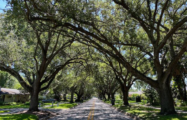 New Orange County Bike Trail Master Plan now available for viewing