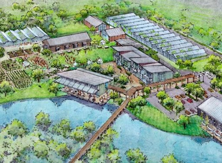 4Roots Farm in Packing District - 18 Acres of Greenhouses, Classrooms and More