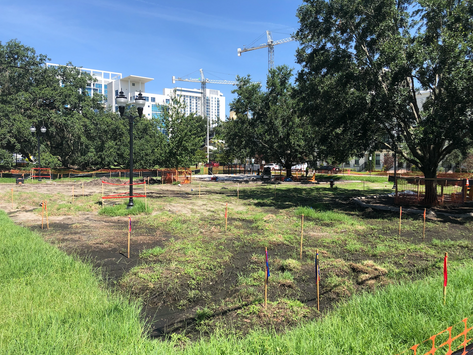 Constitution Green Dog Park Grand Re-Opening This Thursday