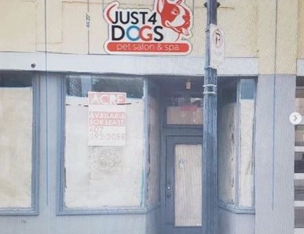 Just 4 Dogs Pet Salon Opening Downtown