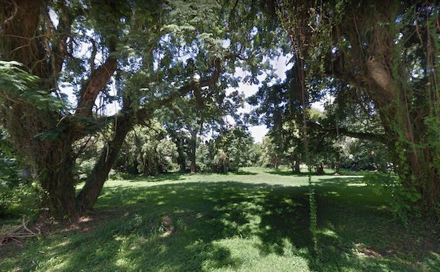 An Apopka food hall will eventually rise on this shady plot of land.