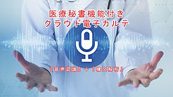 医療秘書機能付き電子カルテ.jpg