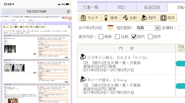 kanataのカルテ_Web版画面.png