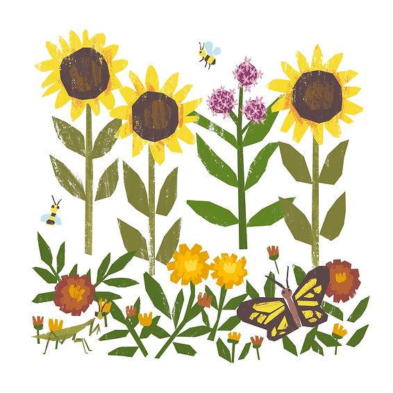 Summer Pollinators.jpeg