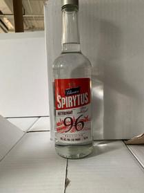 Our spirit 96