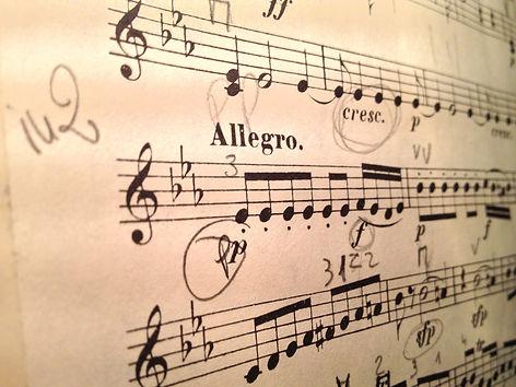 violin-1085606_1920.jpg