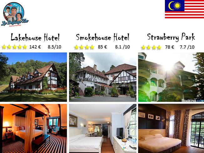 Cameron Highlands best hotel vierge.png