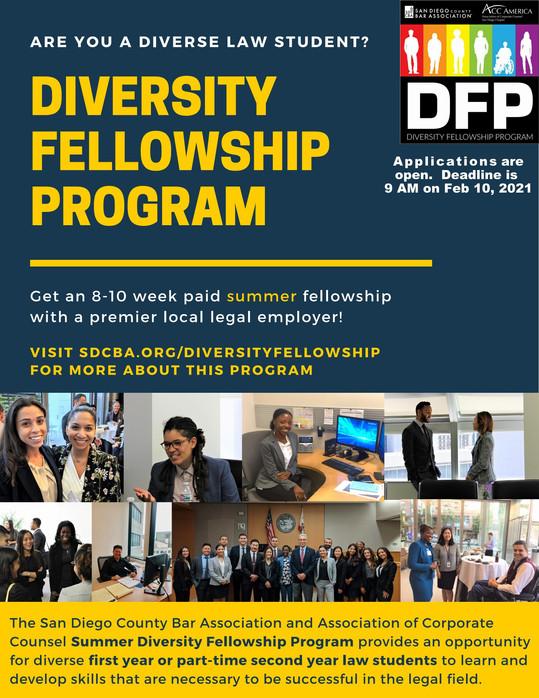 Diversity Fellowship Program