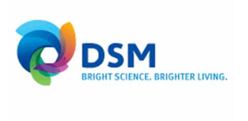 DSM logo.png