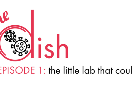 Podcast: The Dish