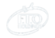 FTO Logo Transparent.png