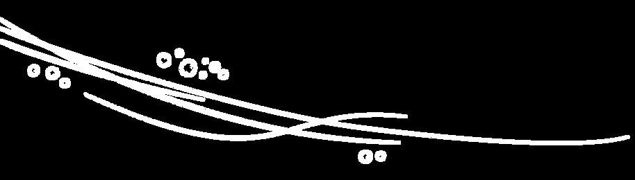 franja-21.png