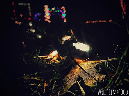 67_ Lights._._._._._._._._._.jpg