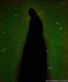 28_ Shadow 2._._._._._._._._._.jpg
