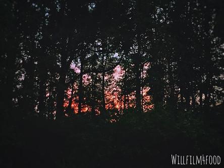 45_ Dawn. ._._._._._.jpg