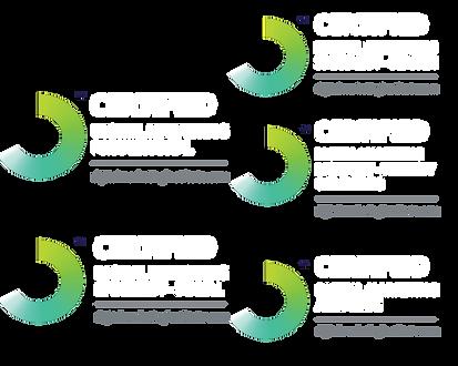 diploma-digital-marketing-singapore-DMI-badges