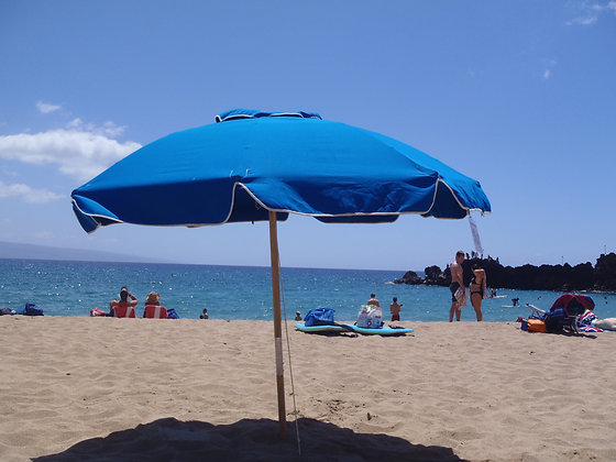 Sunny Baker Julington Umbrella