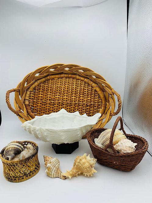 Porcelain shell, natural shells and baskets