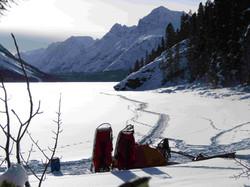 Winter Trips|Yukon|Boreal Kennels