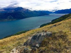 Fishing|Yukon|Boreal Kennels