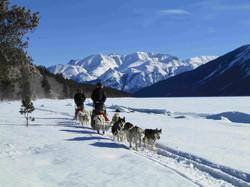 Bennett Lake|Yukon|Boreal Kennels