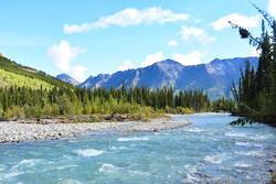 www.borealkennels.com- Yukon Trips