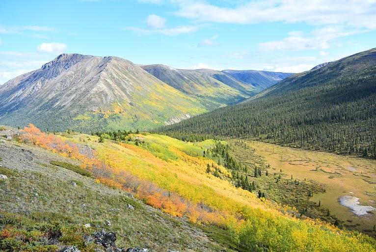 www.borealkennels.com- Yukon Hiking