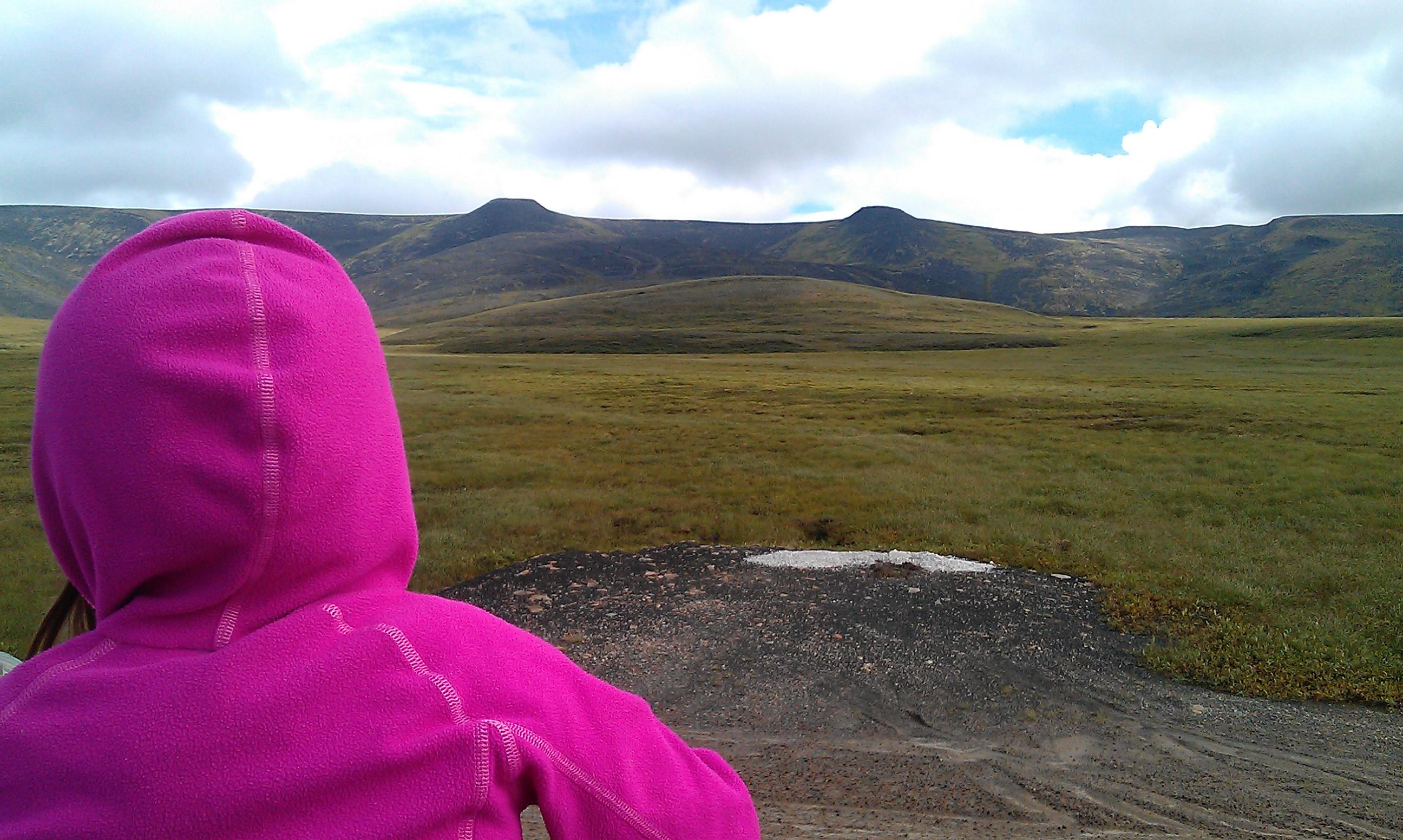 Arctic Tour|Yukon|Borealkennels