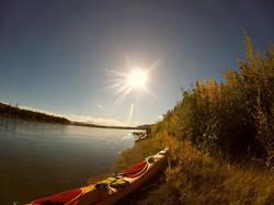 www.borealkennels.com- Yukon River