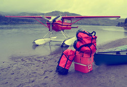 Activités d'été Yukon Borealkennels