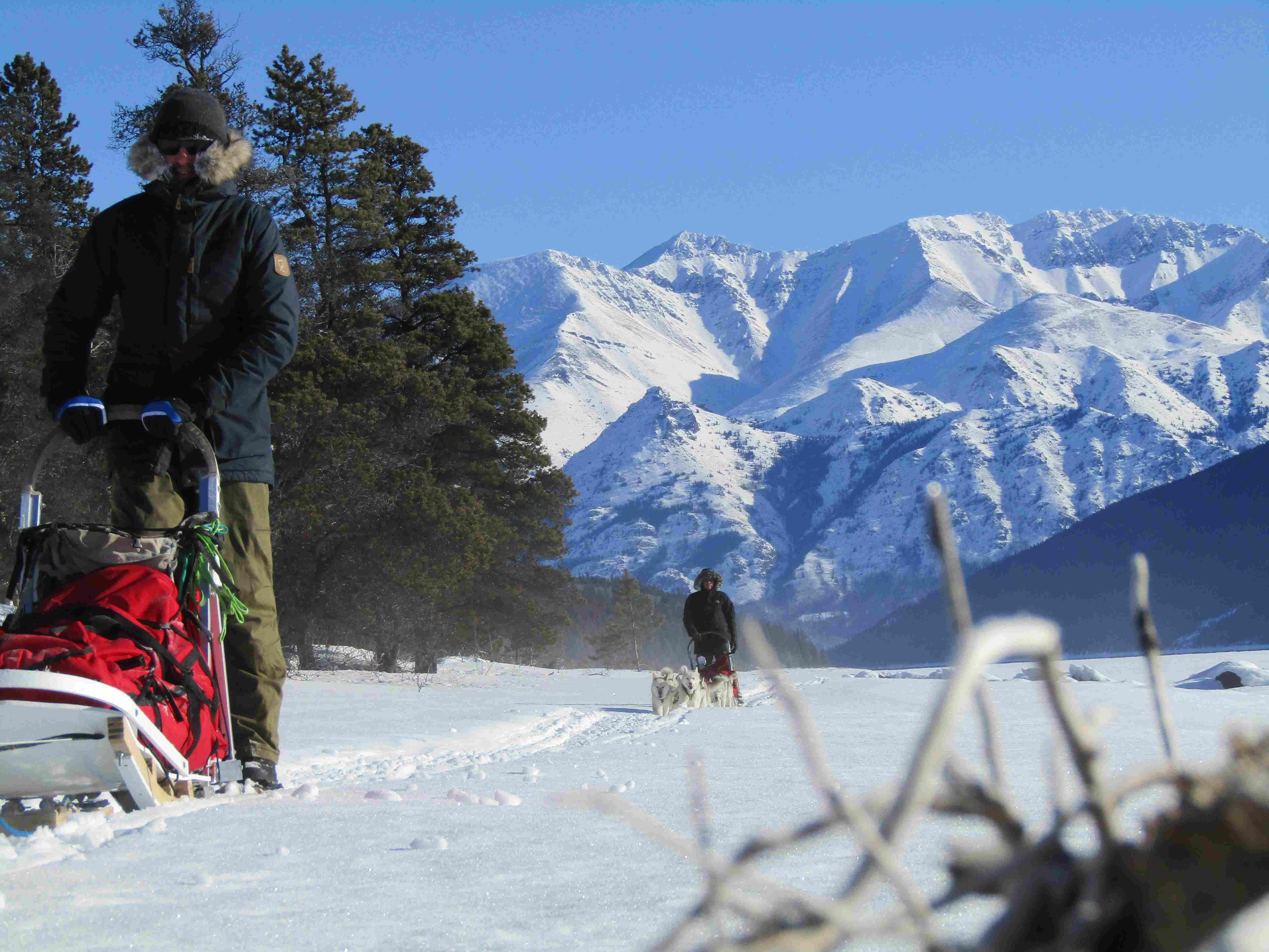 Tours|Yukon|Boreal Kennels