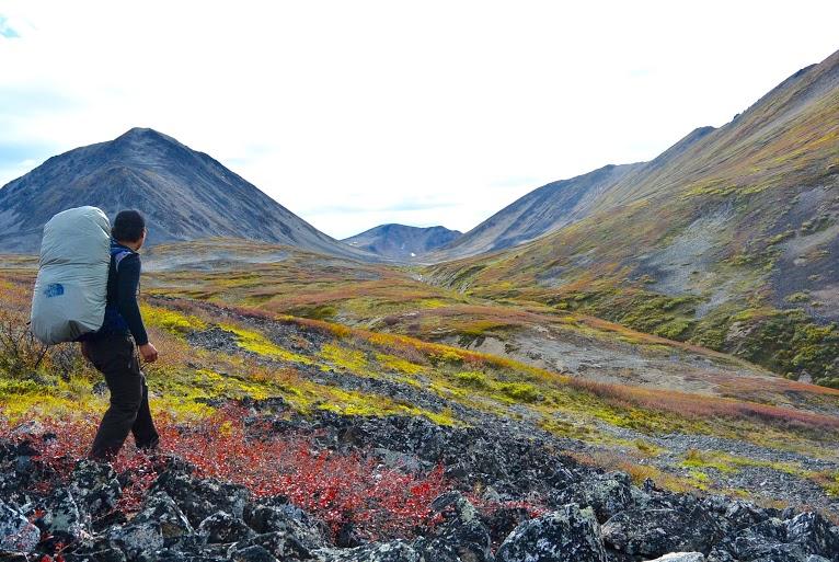 Explore|Yukon|Boreal Kennels