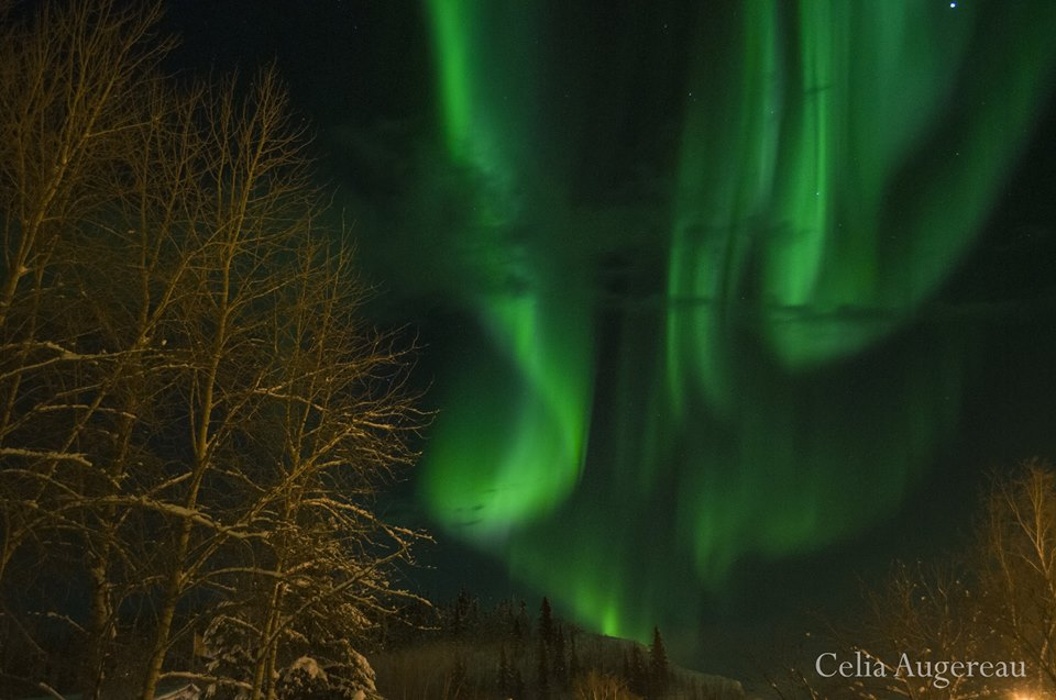 Northern lights Photography|Yukon|Bo
